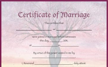 Court marriage, Marriage certificate, Marriage certificates, Love marriage, Arrange marriage, Hindu Marriage Act, Special Marriage Act, Linking Aadhaar with marriage certificate, How to apply for marriage certificate, How to get marriage certificate, How to get marriage certificate in India, Indian marriage certificate, National news
