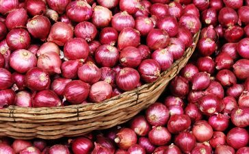 Onion, Kitchen staple, Potato, Petrol, Diesel, Vegetable, Wholesale rates of onion, Wholesale rates of vegetables, Business news